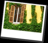 Jenners aus Rostock ist stark im Gartenlandschaftsbau, Geb�udereinigung, Hausmeisterdienst, sowie Reparaturservice.